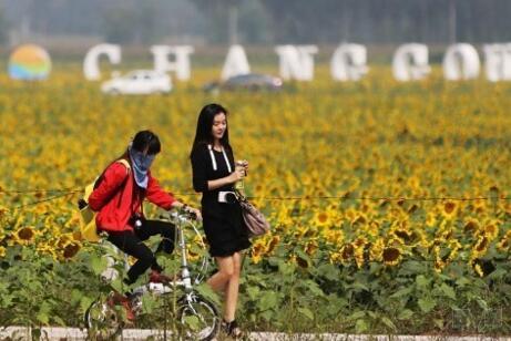 中国特色小镇开发的十大类型