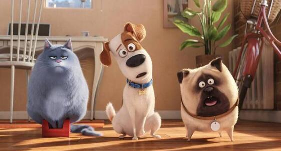 哈里森·福特首次配音家庭动画大片《爱宠大机密2》