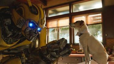 电影《大黄蜂》将于2019年1月4日登陆内地各大院线