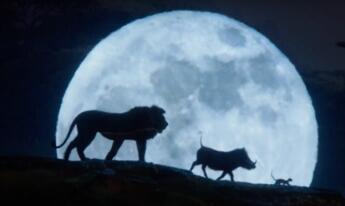 《狮子王》真人版神还原 遭设局辛巴家族陷危机