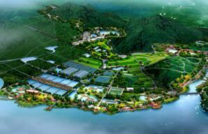 四川第十一届乡村文化旅游节开幕